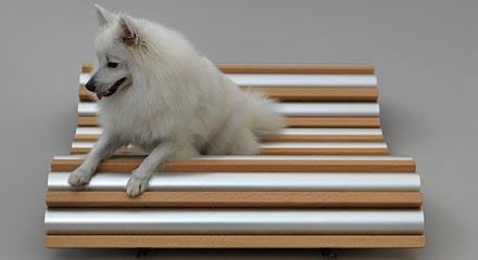 dog-hp